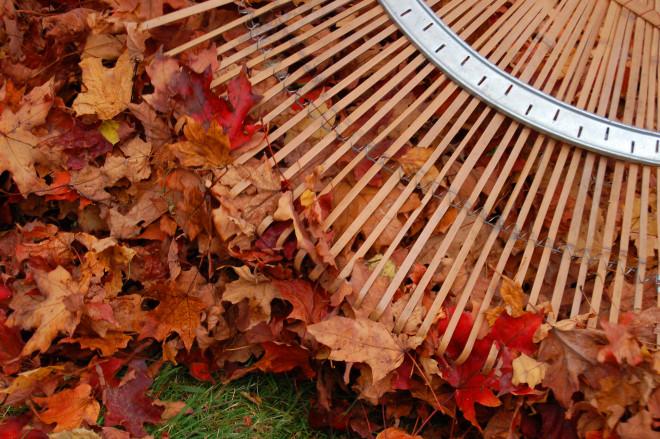 November Garden Works
