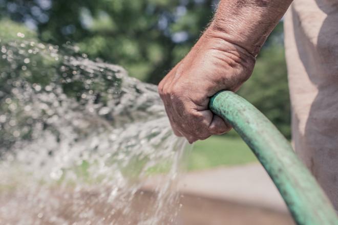 garden maintenance Ealing