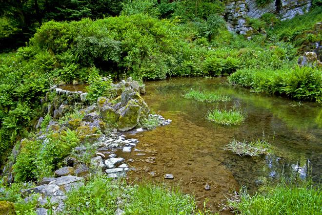 Natural filtration ponds