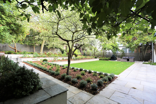 Landscaping in St Johns Wood